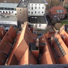 """""""Blick auf die Dächer von Münster"""" Foto: Florian Dubielczyk"""
